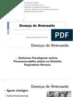 Doença de Newcastle.pdf