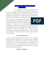 resumen de mamiferos de mexico en peligro de extincion.docx