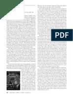 TUMOR OTAK.pdf