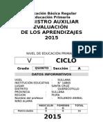 Registro Auxiliar de Evaluacion-Primaria