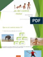 Teorías del control motor.pptx