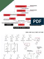 Toxicocinetica de las anfetaminas