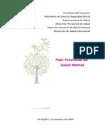 Plan Provincial de Salud Mental 07[1]
