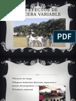 LOS EFECTOS DE TERCERA VARIABLE.pptx