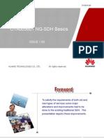 !Day1_1ota005601 Ng-sdh Basics Issue1.00