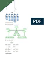 Documento de Organización