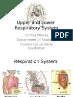 Upper and Lower Resp System - Sindhu Wisesa.pptx