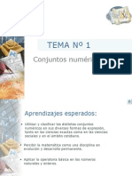 conjuntosnumericos (1)
