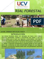 Industria Forestal