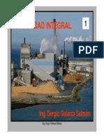 SEG01 Introduccion 2015.0.pdf