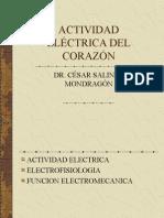 Electrofisiologia Mayo 2014
