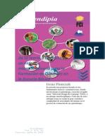 Enfoque Interdisciplinario Formacion de Docentes en Escuelas Basicas