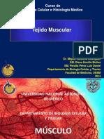 19. Tejido Muscular.pdf
