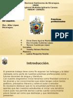 Didactica Especial Del Español