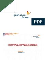 raport_CCIRM ILUMINAT.pdf