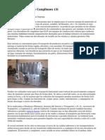 Article   Elevador De Cangilones (3)