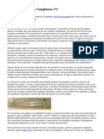 Article   Elevador De Cangilones (7)