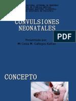 Convulsiones Neonatales Presentación