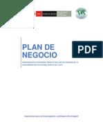Technical report - Plan de Negocios CCNN Pueblo Nuevo.pdf