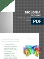 Presentación Enzimas.pptx