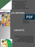 Los Sentidos (1)