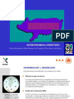 Antibiograma en Disenteria