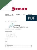 GPN - DIAGRAMA DE PROCESOS
