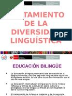 Tratamiento de lenguas  OK.pptx