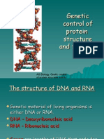 Structure Od DNA