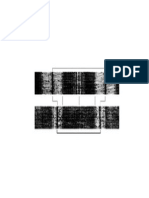 Blank Sarcomere Diagram to Label (1)