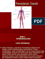 Sistem Peredaran Darah