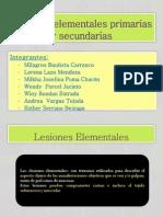 Lesiones Elementales Primarias y Secundarias CF