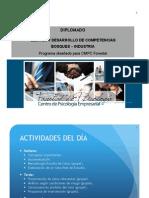 01. PresentaciónCMPC 2013.pptx