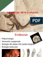 Evidencias de La Evolución 2015