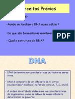 Aula1 DNAisolation&Eletroforese 2007