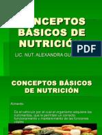 Conceptos Basicos de Nutr111icion