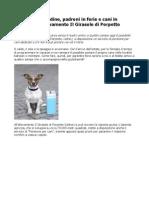 Pensione Cani Udine, Padroni in Ferie e Cani in Vacanza All'Allevamento Il Girasole Di Porpetto