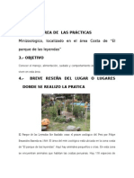 PUNTOS_INFORME_PRACTICAS.doc