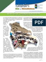 """Boletín Análisis y Estadísticas Nº 4 """"Estado Actual y Procesos de Delimitación de Unidades Territoriales"""""""
