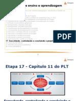 Gestão de Projetos - Etapa 17 - Capítulo 11 do PLT - pdf.pdf