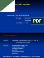 C4 + C5 - 2014 -VALVULOPATII