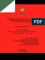Relatório TCC - Paula Salvador 02.12