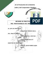 MODELO DE INFORME DE PRACTICAS PRE PROFESIONALES cristian llanto cuenca.docx