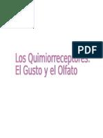 Quimio Receptores Del Gusto y El Olfato