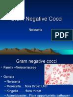 3. G-ve cocci