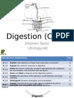 biology digestion