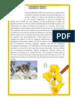 Fundamento Teórico Insectos Randy