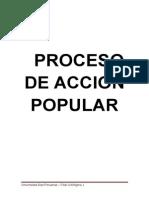 PROCESO DE ACCION POPULAR trabajo completo.docx