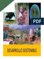 Clase 3 Desarr Sostenible