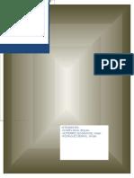 Monografia Proteccion Penal Del Informante